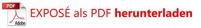 PDF logo DOWNLOAD Real Estate DE